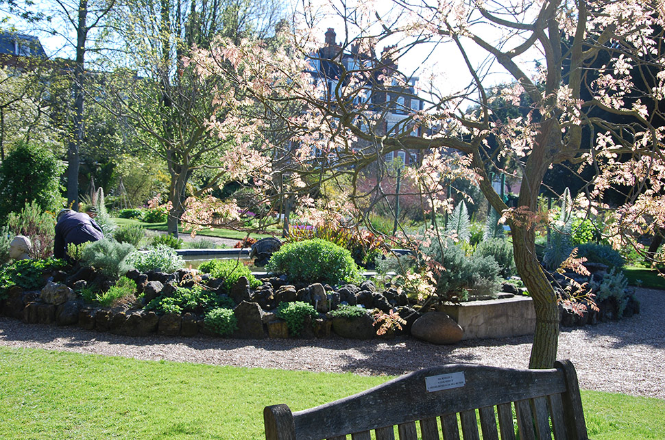 7 reasons why you need to visit the Chelsea Physic Garden café ...